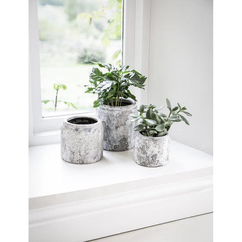 Withington Plant Pot