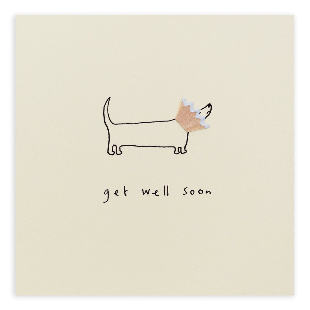 Get Well Dog Cone