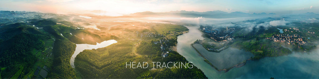 DJI Goggles - Head Tracking