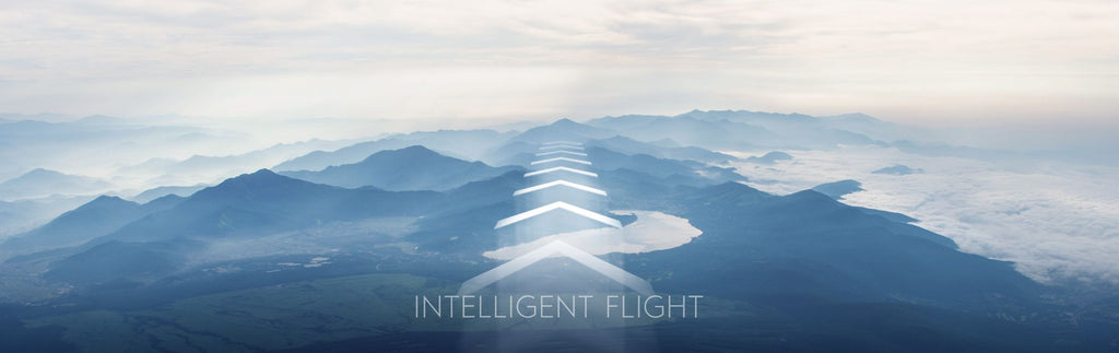 DJI Goggles - Intelligent Flight