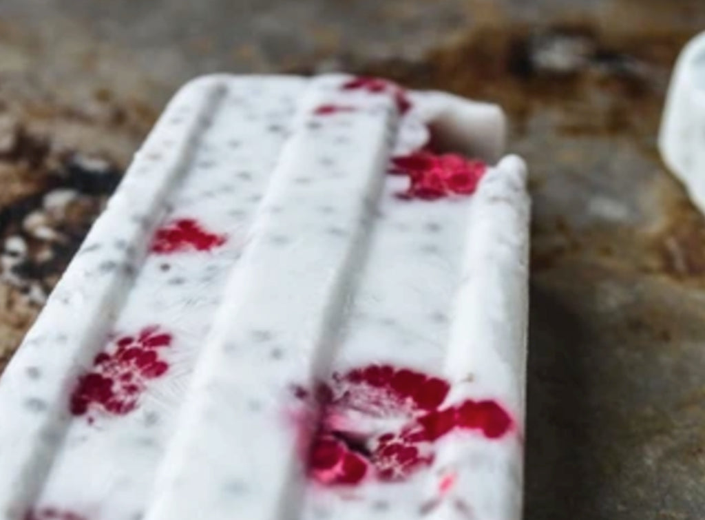 Coconut and Raspberry Chia Popsicle