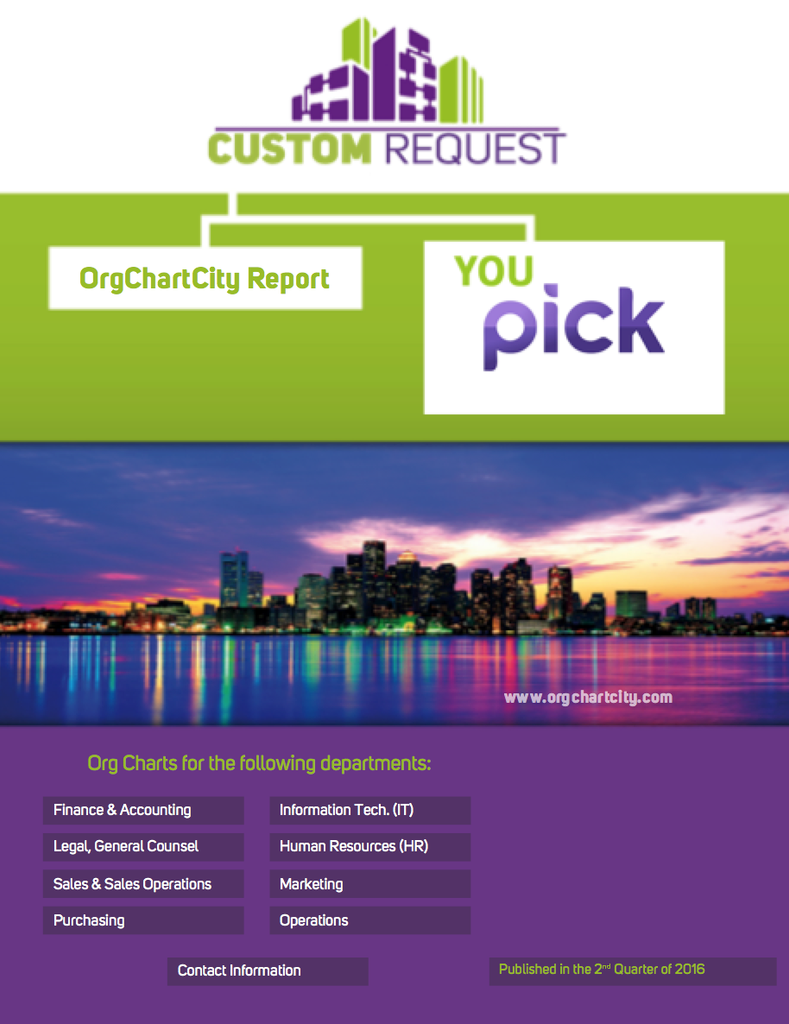 Custom Org Chart Report Request ($315.00) - OrgChartCity