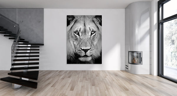Lion Portrait Animal Canvas Wall Art Print