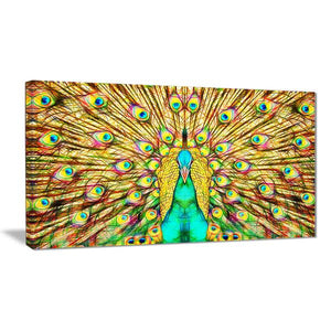 Peacock Vibrant Shades Canvas Wall Art Print