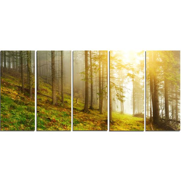 Sunny Forest Landscape Canvas Wall Art Print