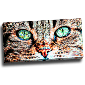 Cat Eyes Canvas Wall Art Print