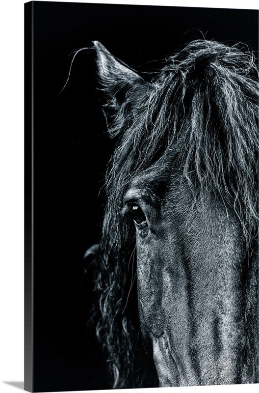 Dark Horse Canvas Wall Art Print