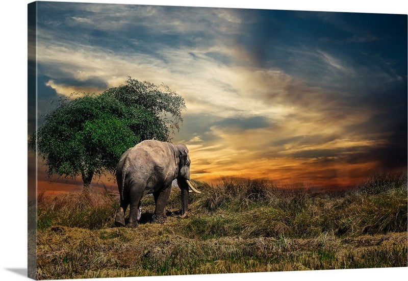 Elephant Stretch Canvas Wall Art Print