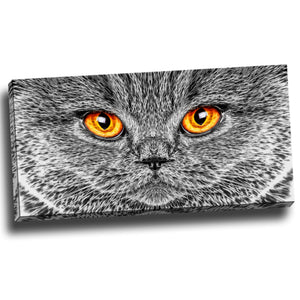 Eyes of the Grey Cat Canvas Wall Art Print