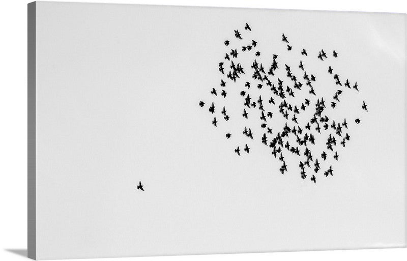Fly High Alone Canvas Wall Art Print