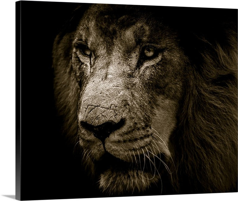King of the Jungle Canvas Wall Art Print
