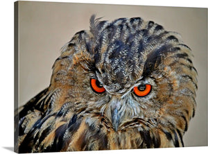 Mad Owl Canvas Wall Art Print
