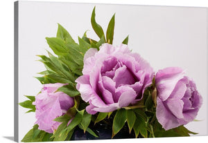 Peony Bouquet Canvas Wall Art Print