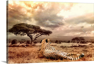 Wild Cheetah Canvas Wall Art Print