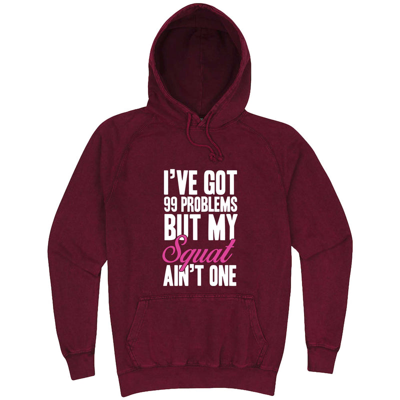 """I Got 99 Problems But My Squat Ain't One"" hoodie, 3XL, Vintage Brick"