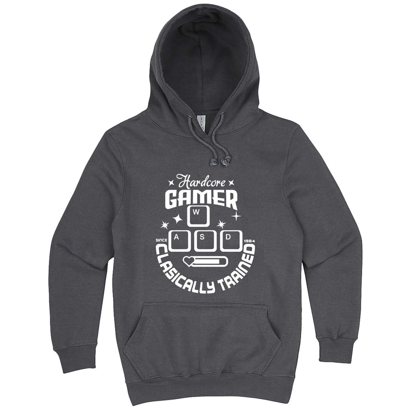 """Hardcore Gamer, Classically Trained"" hoodie, 3XL, Storm"