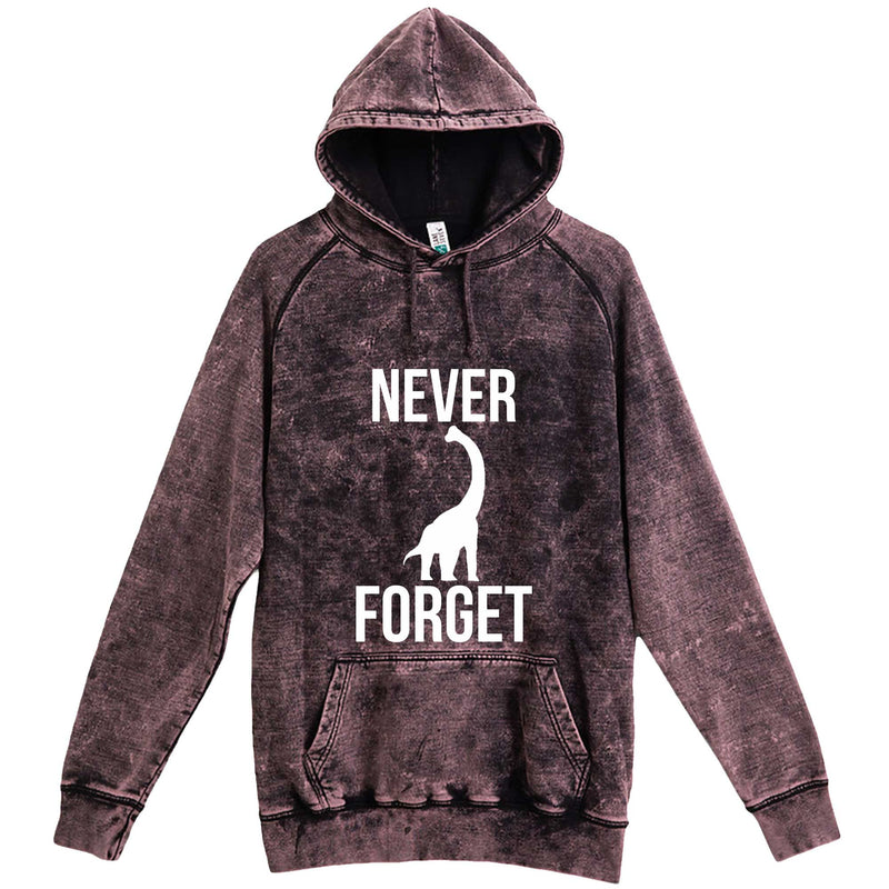 """Never Forget - Dinosaur"" hoodie, 3XL, Vintage Cloud Black"