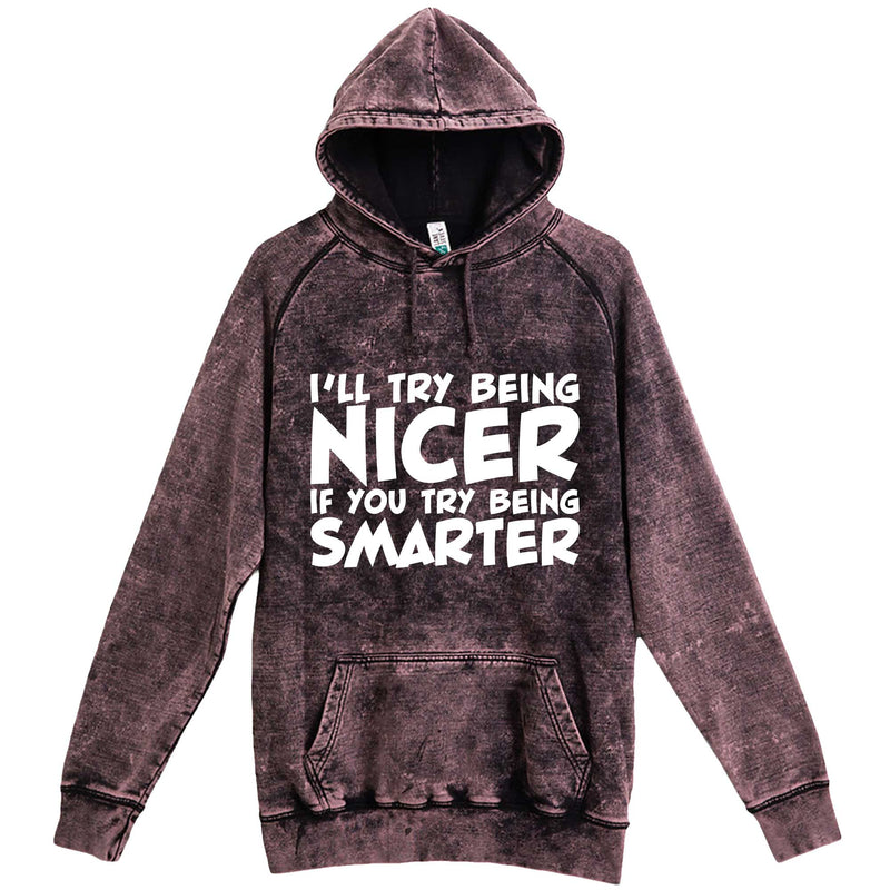 """I'll Try Being Nicer if You Try Being Smarter 1"" hoodie, 3XL, Vintage Cloud Black"