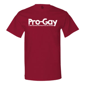 Pro-Gay (I Didn't Practice This Long To Stay An Amateur) T-shirt