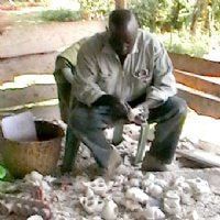 Soapstone Artists of Kenya
