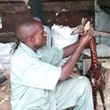 Kenyan Wood & Bone Artists - Snazzy Bazaar