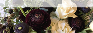 Petal Pusher - Green Bay Wedding Florist