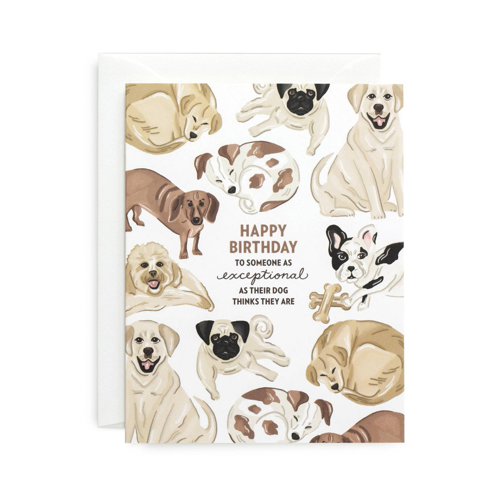 Sagebrushed - Exceptional Birthday Card