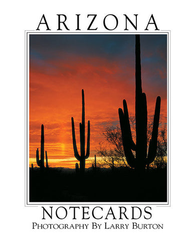 Arizona Note Card Set