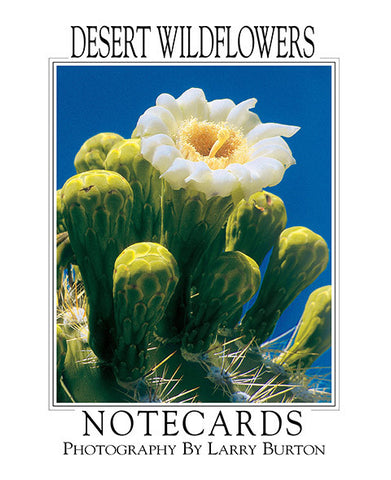 Desert Wildflowers Note Card Set