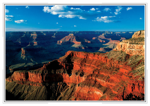 2019 Grand Canyon Wall Calendar