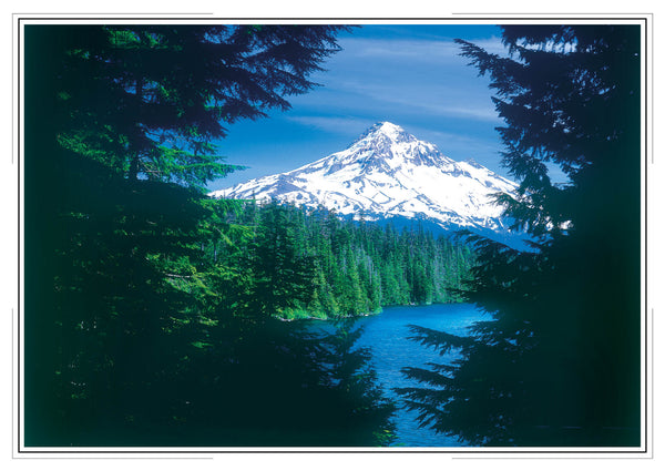 2020 Oregon Wall Calendar
