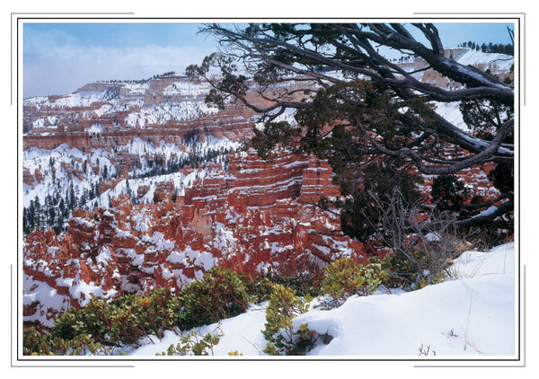 2020 Utah National Parks Pocket Calendar