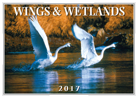 2017 Wings & Wetlands Wall Calendar