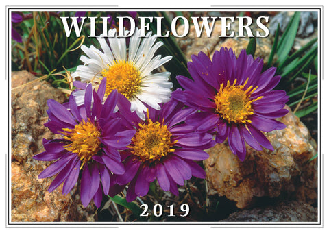 2019 Wildflowers Wall Calendar