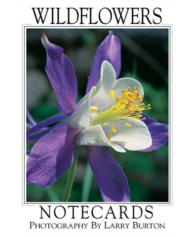 Wild Flowers Note Card Set