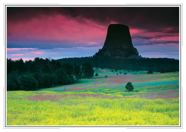 2019 Wyoming Wall Calendar