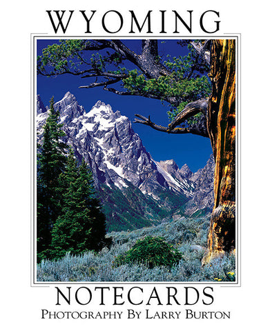Wyoming Note Card Set