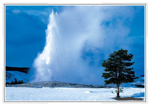 2020 Yellowstone Wall Calendar