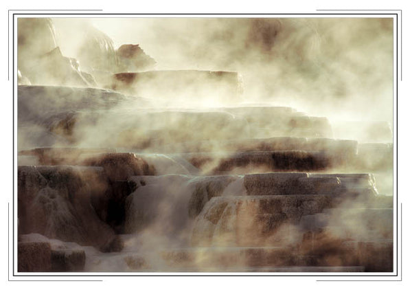 2019 Yellowstone Pocket Calendar