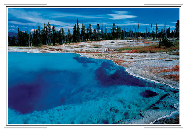 2020 Yellowstone Pocket Calendar