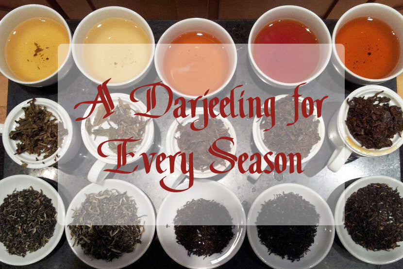 A Darjeeling for Every Season