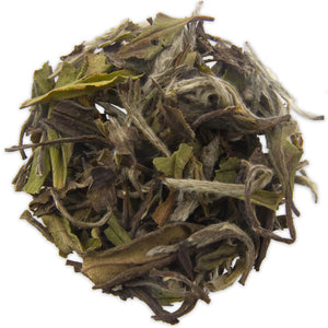 White Peony Chinese White Tea