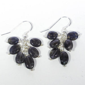 Gemstone Dangle Earrings/Iolite