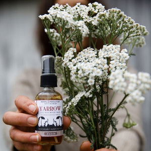 Yarrow Flower Essence Spray