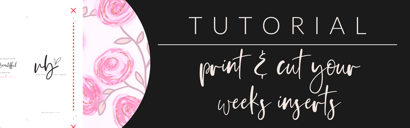 VB Tutorial: Print & Cut Your Weeks Inserts