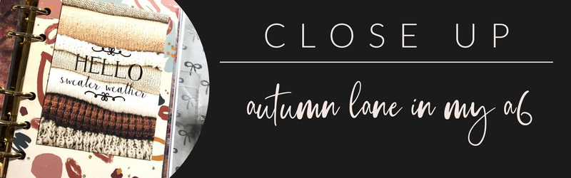 VB Close Up: Autumn Lane in my A6