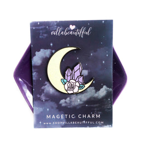 Magical Plans Magnetic Charm