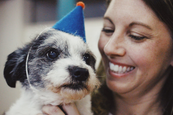 Founder Interview - Kristen Peralta, Vintage Pet Rescue
