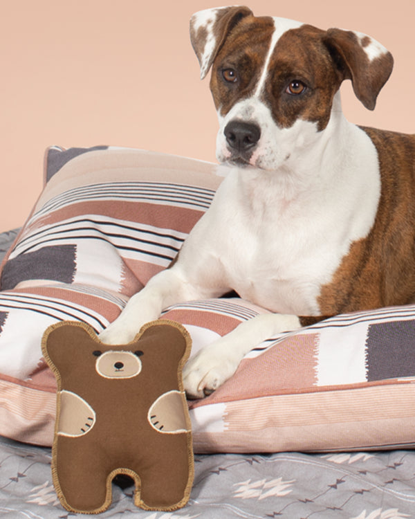 CANVAS BEAR DOG TOY BY FRINGE STUDIO. CUTE BEAR DESIGN AND HAS A SQUEAKER. SEEN WITH A LARGE DOG.