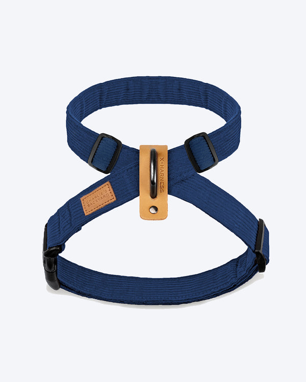 FIELD X-HARNESS BY CHARLIE'S BACKYARD. NAVY AND ADJUSTABLE. FEATURED ON A BULLDOG.
